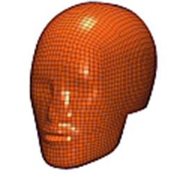 Free Motion Head Form